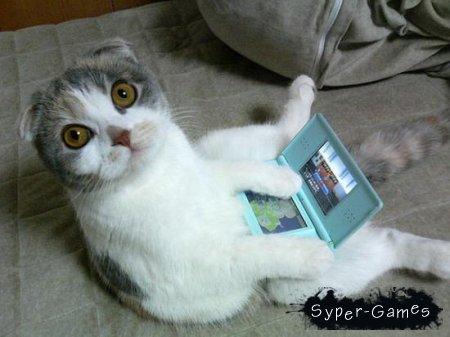 Популярная подборка java-игр