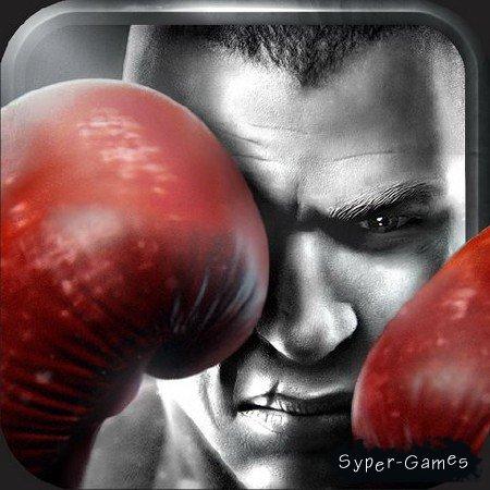 Real Boxing v1.3